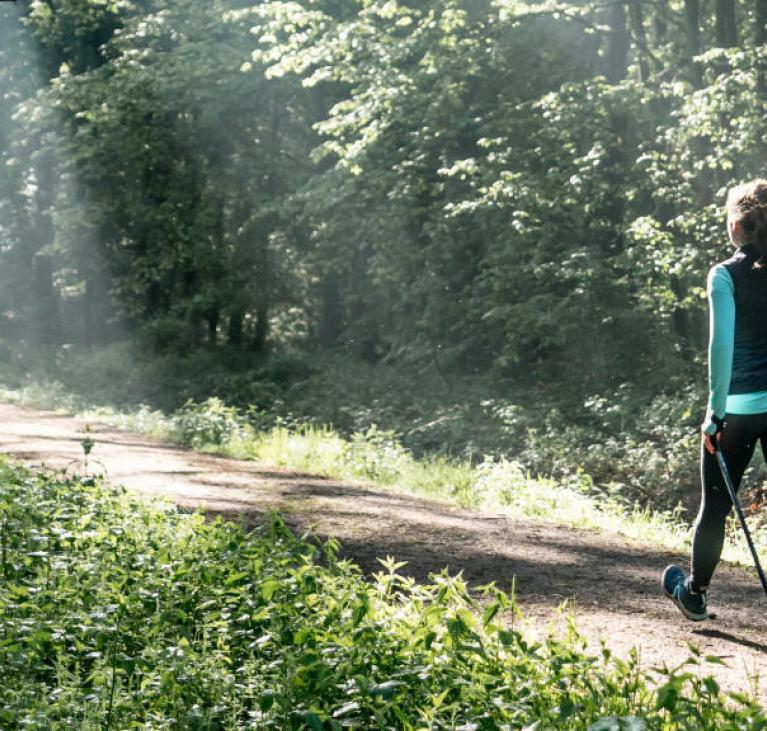 Personne qui marche en forêt